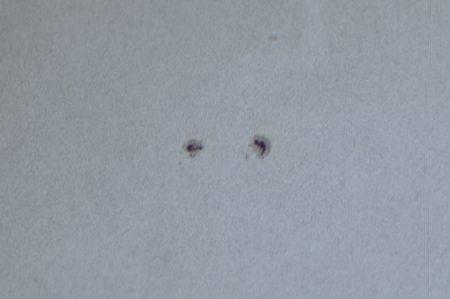 Skvrny nad středem slunečního kotouče. 200 snímků z 1000. Autostakkert, Registax 6