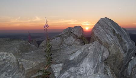 východ slunce s kameny a květinami